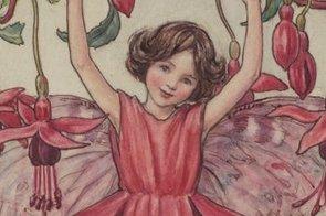The Fuchsia Fairy Intro Image